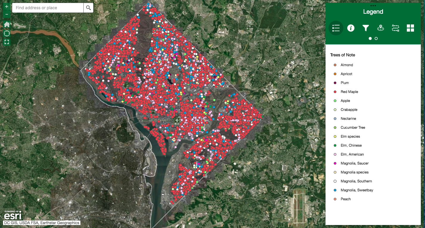 Map of Blossoming DC Trees