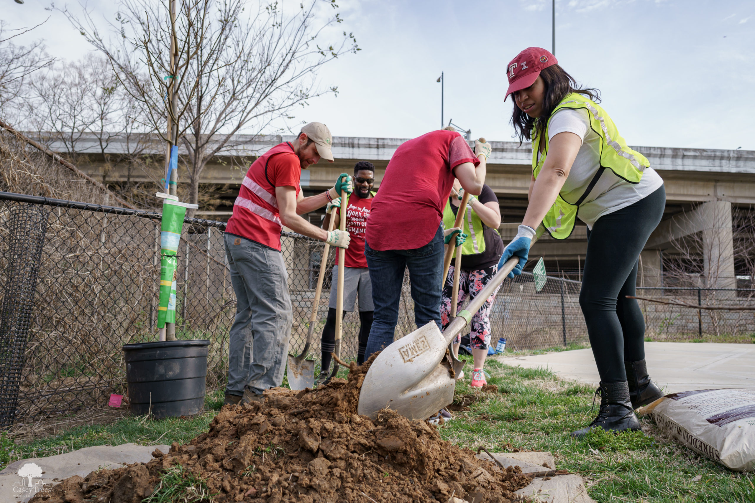 volunteers digging with shovels and a pickax